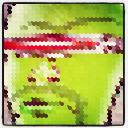 #PolyPic #art #apps #ipad  - Instagram